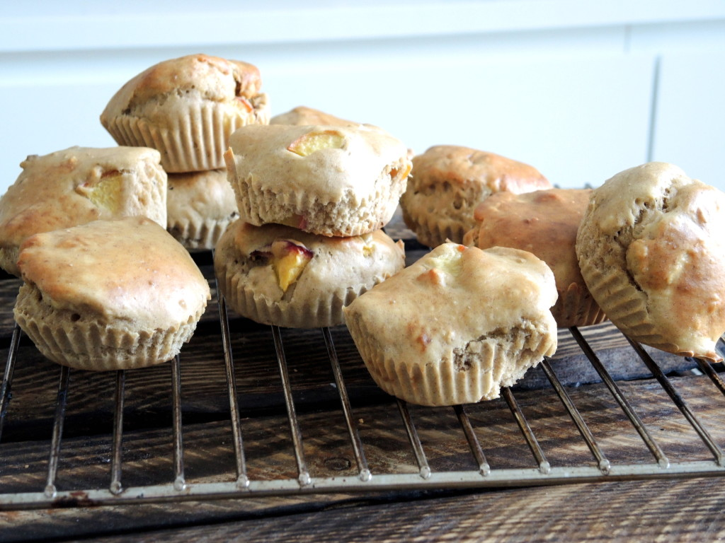 fit muffinki