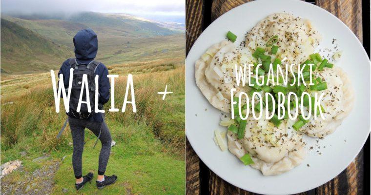 Walia + Co jem w ciągu dnia? – Wegański Foodbook #9